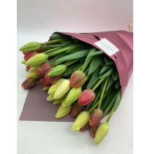 Tulipán 40 szál vegyes
