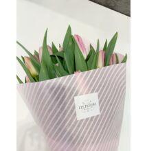 Tulipán 60 szál Rózsaszín