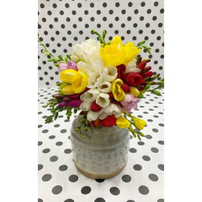 Frézia színes 20 szál+váza